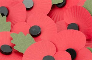 Orbitas blog: Remembrance Sunday at Macclesfield Cemetery